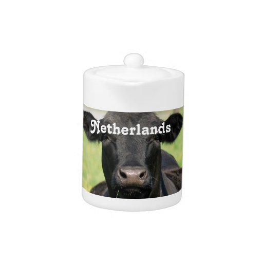 Cow in Netherlands