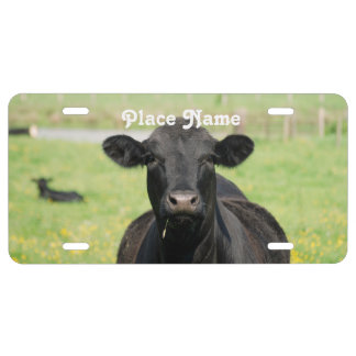 Cow in Netherlands License Plate
