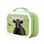 Cow in Netherlands Lunchboxes