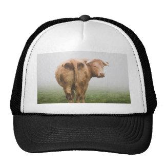 cow in the fog trucker hat