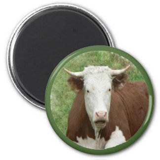 Cow in the Grass Cameo Magnet