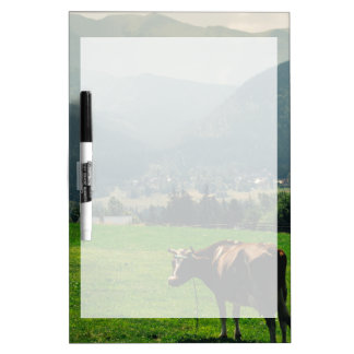 Cow In The Mountains Nature Landscape Photo Dry Erase Board
