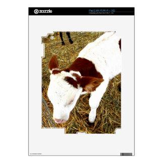 Cow iPad 2 Decal