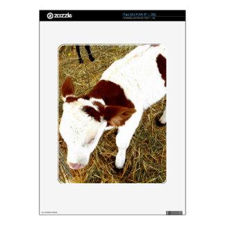 Cow iPad Decals