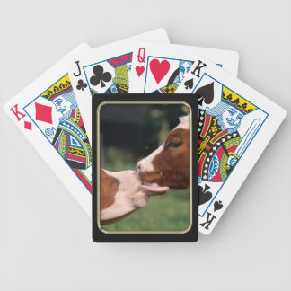 Cow Kisses Photo Art Playing Cards