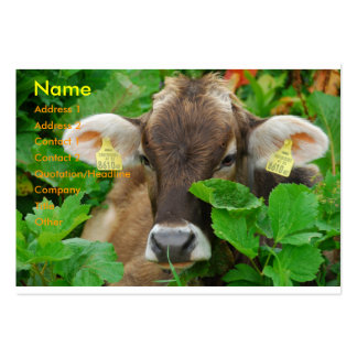 Cow Large Business Card