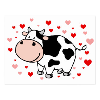 Cow Love Postcard