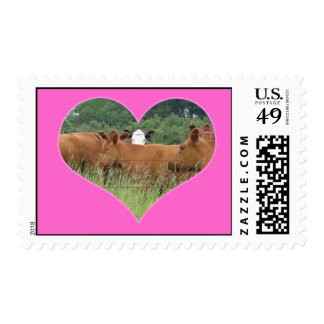 Cow Love-White Faced Cow with Herd of Red Cows Stamp
