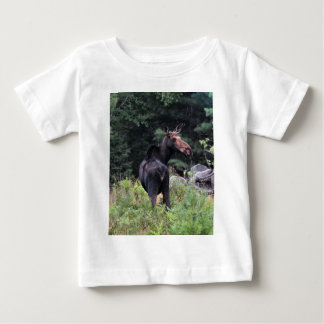 Cow Moose at Baxter State Park Shirt