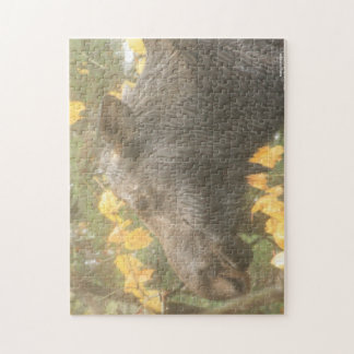 Cow moose in the Maine rain Jigsaw Puzzles