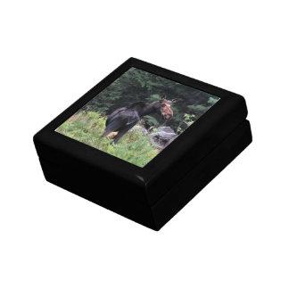 Cow Moose Jewelry Box