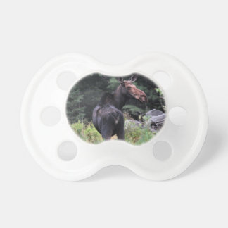 Cow Moose Baby Pacifiers