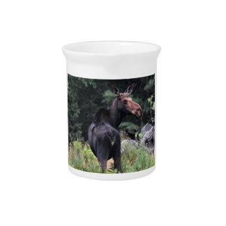 Cow Moose Pitcher