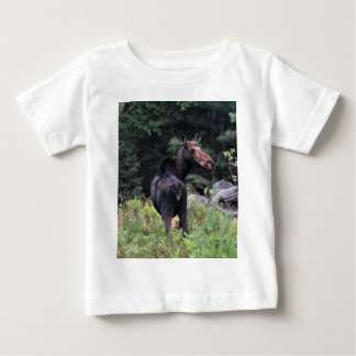 Cow Moose Tshirts