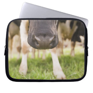 Cow nose computer sleeve