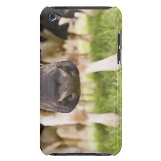 Cow nose iPod Case-Mate case