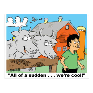 COW / NOSE RING / FARMER KID CARTOON GIFTWARE POST CARDS