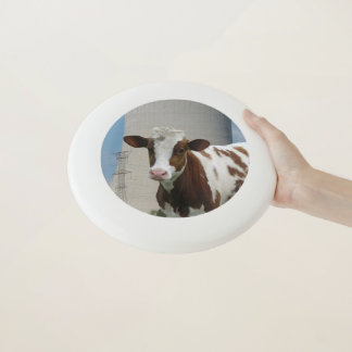 Cow & Nuclear Power Cooling Tower Wham-O Frisbee