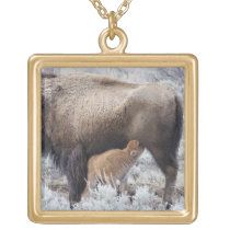 Cow Nursing Bison Calf, Yellowstone 2 Gold Plated Necklace