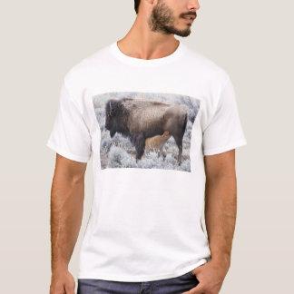 Cow Nursing Bison Calf, Yellowstone 2 T-Shirt