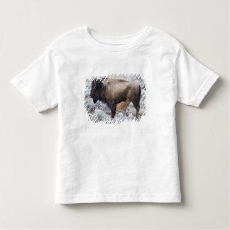 Cow Nursing Bison Calf, Yellowstone 2 Toddler T-shirt