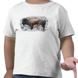 Cow Nursing Bison Calf, Yellowstone 2 T Shirts