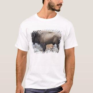 Cow Nursing Bison Calf, Yellowstone 3 T-Shirt