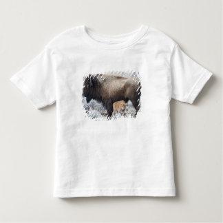 Cow Nursing Bison Calf, Yellowstone 3 Toddler T-shirt