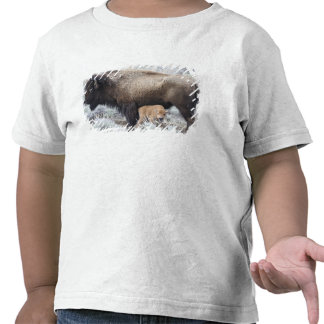 Cow Nursing Bison Calf, Yellowstone 3 Shirt
