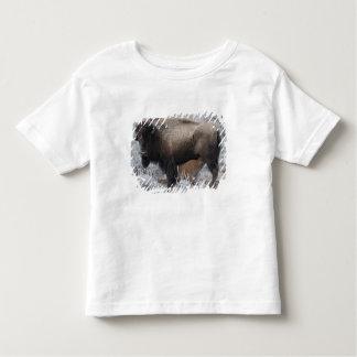 Cow Nursing Bison Calf, Yellowstone Toddler T-shirt