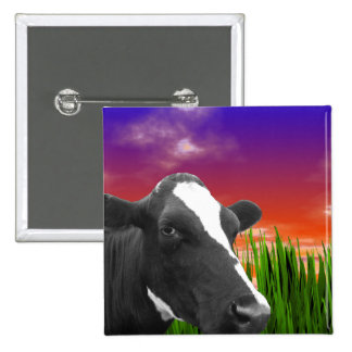 Cow On Grass & Vivid Sunset Sky Pinback Button