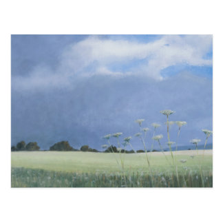 Cow Parsley 2012 Postcard