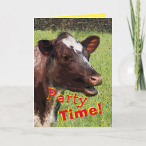 Cow Party time Birthday card