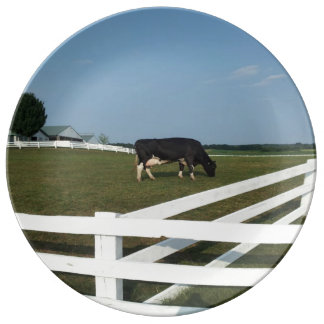 Cow Plate Porcelain Plate