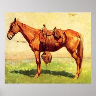 Cow Pony Canvas Print