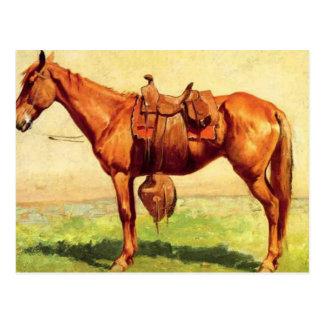 Cow Pony Postcard