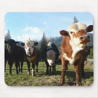 Cow Posse Mouse Pad