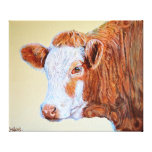 Cow Print Hereford Cow Canvas Print