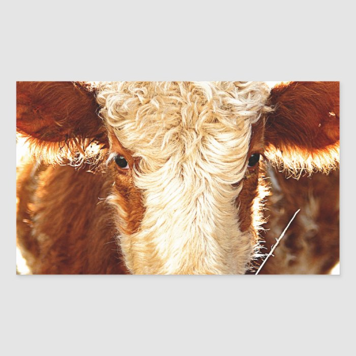 Cow Rectangular Sticker