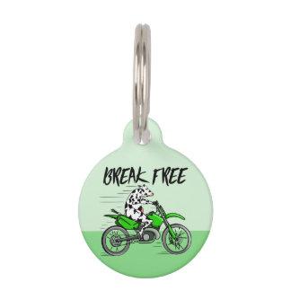 Cow riding a green motor cross bike pet name tag