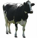 Cow Sculpture Photo Cut Outs