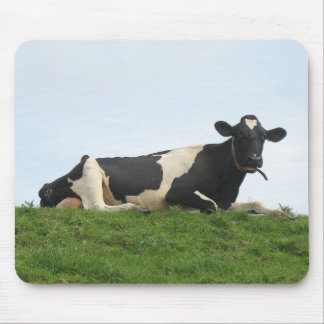 Cow Sitting, Relaxing and Looking at You! Mousepad