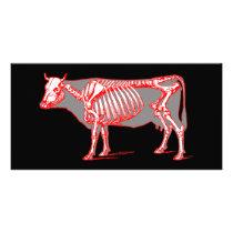 Cow skeleton card