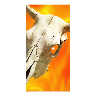 Cow skull and fire card
