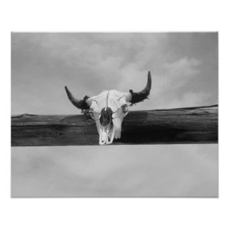 Cow Skull Black and White Poster