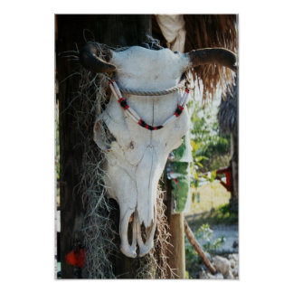 Cow Skull Southwest Art Western Cow skull poster