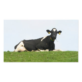 Cow Small Photo Business Cards