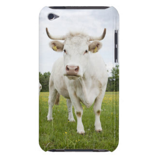 Cow standing in grassy field barely there iPod cover