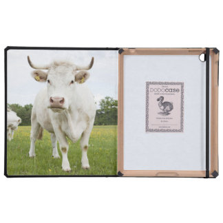 Cow standing in grassy field iPad covers