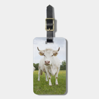 Cow standing in grassy field luggage tag